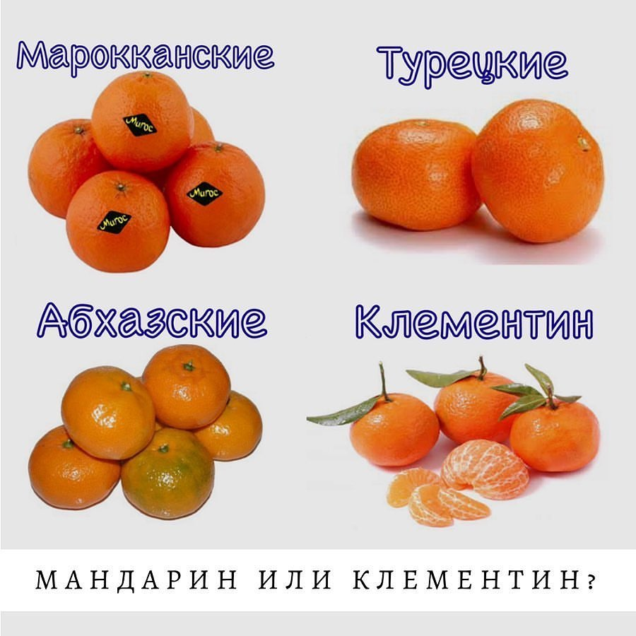 Сорта мандаринов